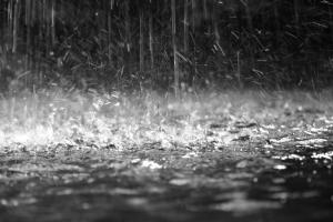 rain_medium-1